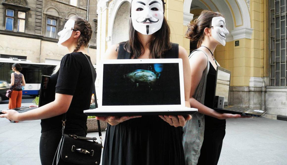 Vegan activisme in de Balkan